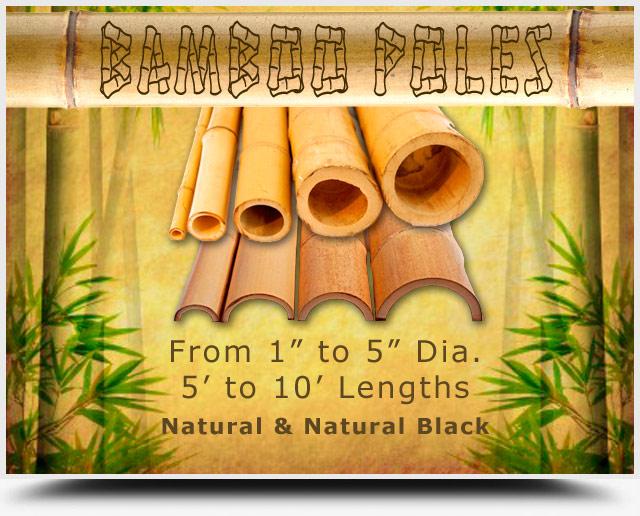 Bamboo Poles San Diego