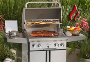 Stainless Steel Gas Grills - Important Features to Look for When Buying a Gas Grill